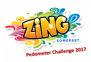 Workplace Activity Pedometer Challenge 2017
