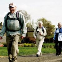 Frome Health Walks (Wednesday's)